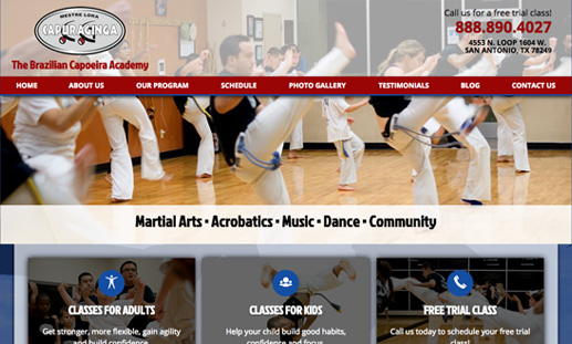 The Brazilian Capoeira Academy